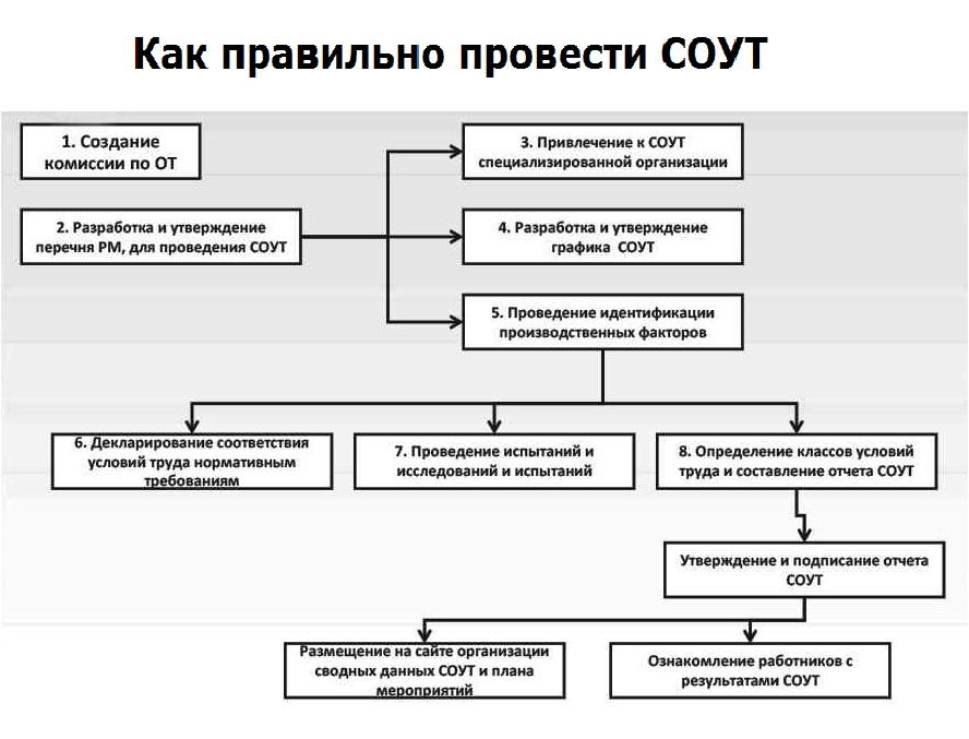 Как провести специальная оценка условий труда в организацииъ